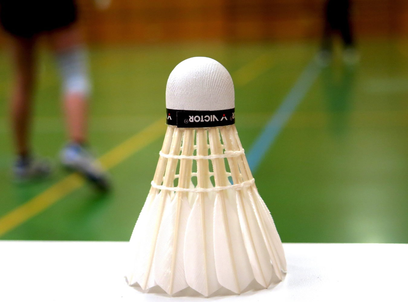 https://www.bcetupes.info/wp-content/uploads/2019/09/badminton_1350.jpg